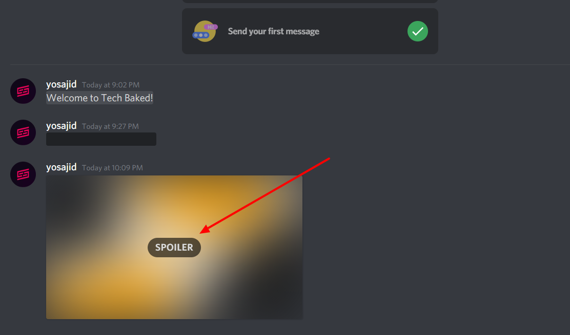 How to use Discord Spoiler Tag - Spoiler Tag on Image